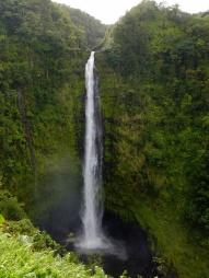 Akaka falls: 120m de chute