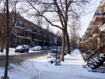 Les rues du Mont Royal