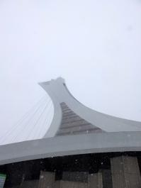 Le stade olympique, reconverti en biodome